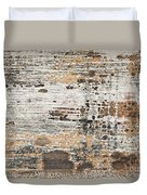 Old Painted Wood Abstract No.1 Duvet Cover by Elena Elisseeva