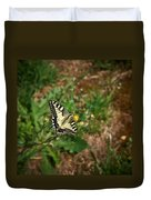 Old World Swallowtail. Montorfano. Cologne Duvet Cover