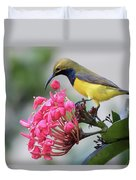 Olive-backed Sunbird Male With Flower Duvet Cover
