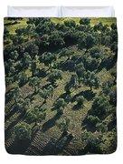 Olive Farmland In Spain Duvet Cover