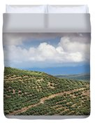Olive Trees In A Field, Ubeda, Jaen Duvet Cover