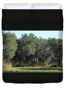 Olive Trees Of Provence Duvet Cover