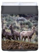 On The Ledge Duvet Cover by Mike  Dawson