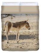Onager Equus Hemionus Duvet Cover