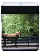 One Very Pretty Hilton Head Island Horse Duvet Cover
