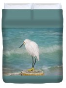 One With Nature - Snowy Egret Duvet Cover