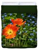 Orange And Blue - Beautiful Spring Orange Poppy Flowers In Bloom. Duvet Cover