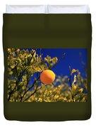 Orange And Blue Sky Duvet Cover