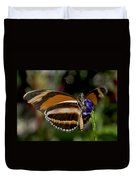 Orange Banded Butterfly Duvet Cover