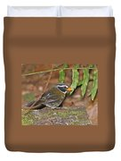 Orange-billed Sparrow Duvet Cover