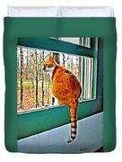 Orange Cat In Window Duvet Cover