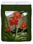 Orange Colored Orchid Duvet Cover