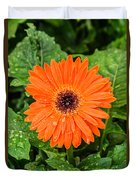 Orange Gerber Daisy 2 Duvet Cover