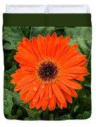Orange Gerber Daisy 3 Duvet Cover