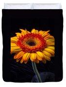 Orange Graphic Mum Duvet Cover