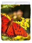 Orange Gulf Fritillary Duvet Cover