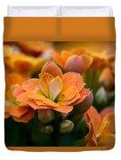 Orange Kalanchoe With Company Duvet Cover