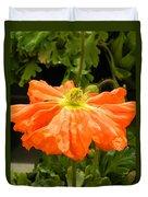 Orange Skirted Poppy  Duvet Cover