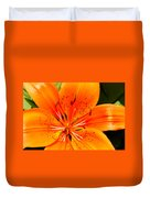 Orange Slices Duvet Cover