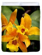 Orange Spotted Lip Cattleya Orchid Duvet Cover