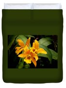 Orange Spotted Lip Cattleya Orchid Duvet Cover by Rudy Umans