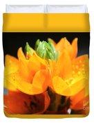 Orange Star Duvet Cover