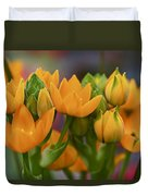 Orange Stars - Floral - Ornithogalum Dubium - Sun Stars Duvet Cover