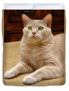 Orange Tabby Cat Duvet Cover