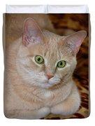 Orange Tabby Cat Poses Royally Duvet Cover