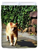 Orange Tabby Taking A Walk Duvet Cover