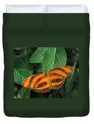 Orange Tiger Butterfly Or Banded Orange Duvet Cover