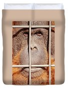 Orangutan Face Watching From Behind Steel Bars Duvet Cover