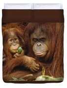 Orangutan Mother And Baby Duvet Cover