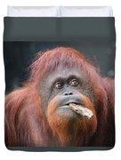 Orangutan Portrait Duvet Cover