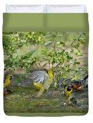 Orchard Orioles Duvet Cover