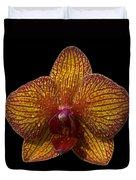 Orchid 16 Duvet Cover