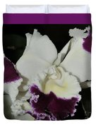 orchid 221 Cattleya Moscombe 'The King'  1 of 3 Duvet Cover