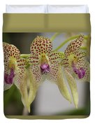 Orchid 8 Duvet Cover