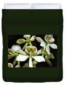 Orchid Encyclia Fragrans Duvet Cover