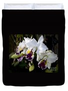 Orchid Laeliocattleya Lucie Hausermann With Buds 4074 Duvet Cover