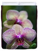 Orchid One Duvet Cover