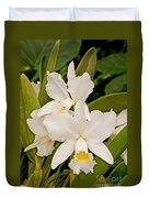 Orchid Sophronitis Duvet Cover