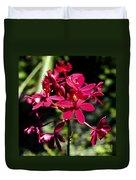 Orchid Study V Duvet Cover
