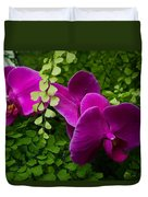Orchids And Baby Tears Duvet Cover