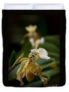 Orchids Pictures 28 Duvet Cover