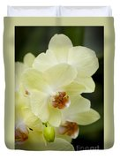 Orchids Pictures 34 Duvet Cover