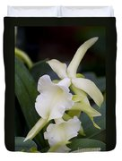 Orchids Pictures 53 Duvet Cover