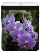 Orchids Square Format Img 5437 Duvet Cover