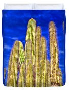 Organ Pipe Cactus Arizona By Diana Sainz Duvet Cover