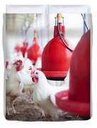 Organic Chicken Coop  Duvet Cover